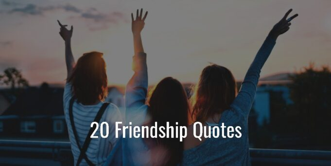 20 Friendship Quotes