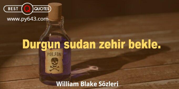 William Blake Sözleri